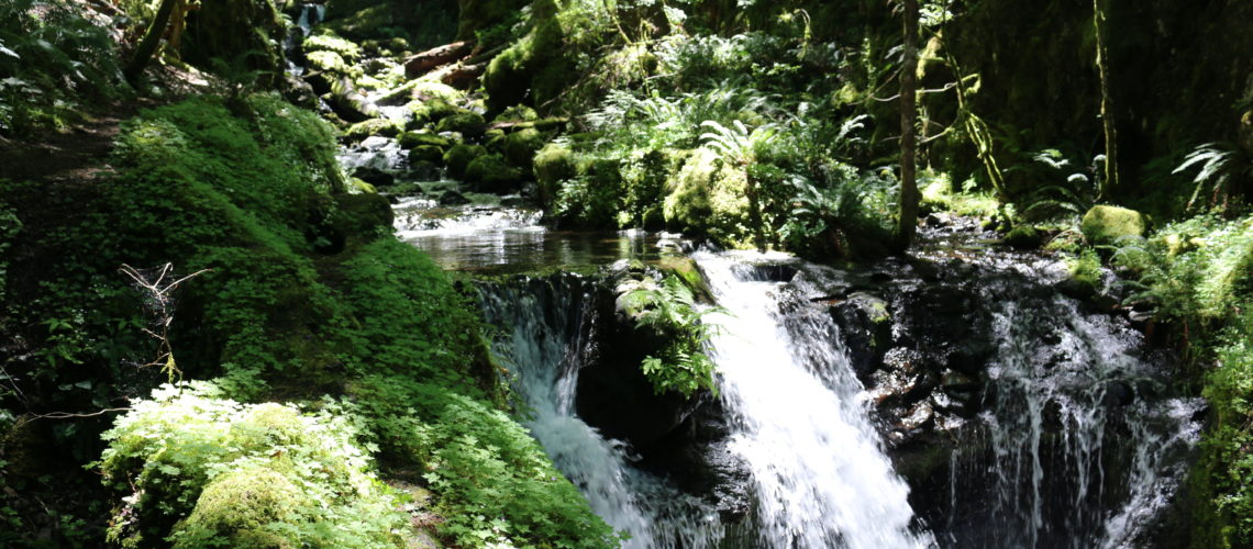 Oregon June 30 214 123